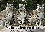Schneeleoparden. Perfekte Raubkatzen-Schönheiten (Wandkalender 2018 DIN A3 quer): Die wunderschönen Raubkatzen des Hochgebirges (Monatskalender, 14 ... [Kalender] [Apr 01, 2017] Stanzer, Elisabeth
