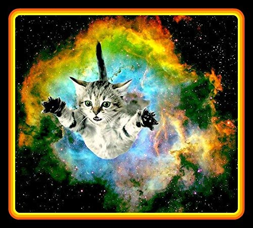 Yilooom Pussy Cat In Space Vinyl Decal Sticker for Laptop Fridge Guitar Car Motorcycle Helmet Toolbox Luggage Cases 6 Inch In Width