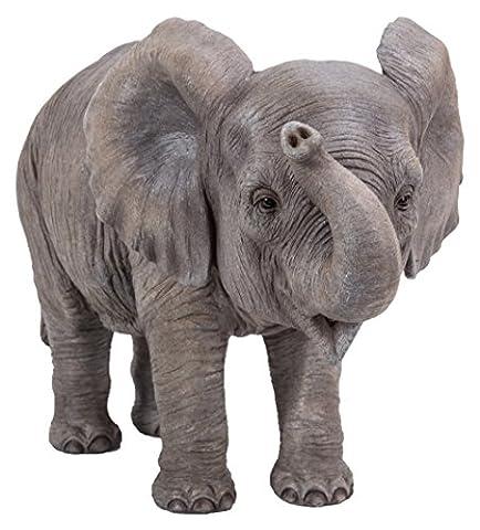 Vivid Arts Plant PAL Range–Bébé éléphant