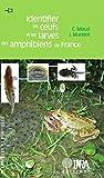 Image de Identifier les oeufs et les larves des amphibiens de France