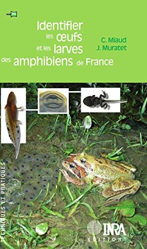 identifier-les-oeufs-et-les-larves-des-amphibiens-de-france-techniques-et-pratiques