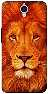 The Racoon Grip Face of the Lion hard plastic printed back case for Alcatel Onetouch Idol X Plus 6043D