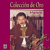 Colecciàn De Oro Vol.5 - Joan Sebastian