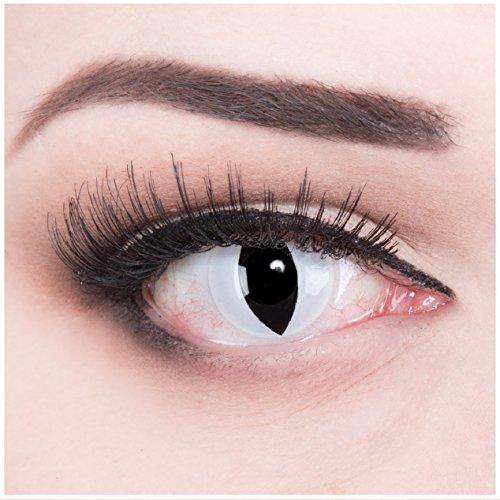 Funnylens 1 Paar farbige schwarz weise weisse crazy Jahres Kontaktlinsen ohne Stärke crazy contact lenses Katzenauge weiß Viper Cat Eye 1 Paar perfekt zu Fasching mit Verdrehschutz! Mit gratis Linsenbehälter (Permanente Kontaktlinsen)