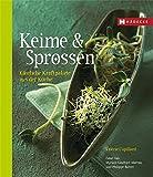 Keime & Sprossen: Köstliche Kraftpakete aus der Küche