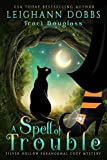 A Spell Of Trouble (Silver Hollow Paranormal Cozy Mystery Series Book 1) by Leighann Dobbs