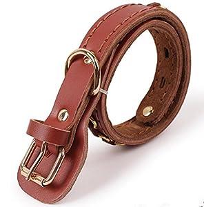 NWYJR En cuir collier pour chien réglable confortable Durable anti-morsure pour gros chiens de petites et moyennes