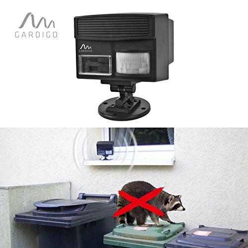Gardigo Waschbären-Abwehr Ultraschall-Vertreiber gegen Waschbären, Katzen, Hunde, Füchse und Marder