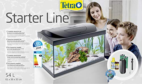 Tetra Starter Line Aquarium-Komplettset mit LED-Beleuchtung - 3