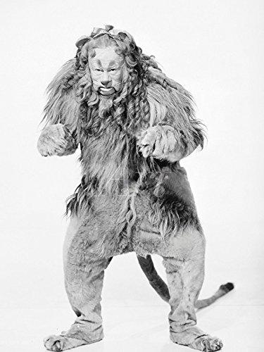 Artland Leinwand auf Keilrahmen oder gerolltes Poster mit Motiv Filmszene Der Zauberer von Oz, 1939 Film & TV Stars Fotografie Schwarz/Weiß C4ZM