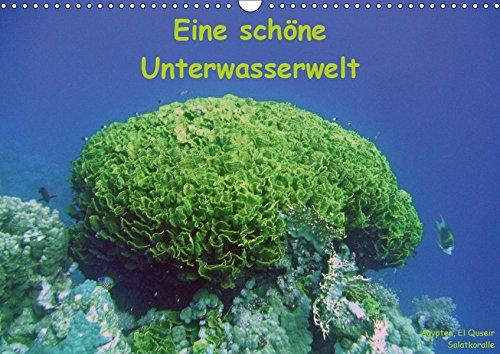 sserwelt (Wandkalender 2019 DIN A3 quer): Bilder aus der Unterwasserwelt (Monatskalender, 14 Seiten ) (CALVENDO Natur) ()