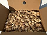10kg BBQKontor Premium Anzünder aus Holzwolle & Wachs - Grillanzünder Kaminanzünder Ofenanzünder Brennholzanzünder Kaminholzanzünder Holzanzünder Anzündkamin Grill Grillkohle Holzkohle Briketts Kaminholz Brennholz Feuerkorb
