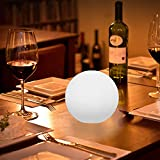 Boule Lumineuse Led 20cm Sans Fil Intérieur Extérieur Avec Télécommande Et Chargeur Induction