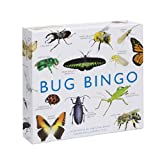 Bug Bingo by Christine Berrie