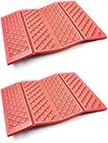 AceCamp Faltbares Sitzkissen I Leichtes Thermokissen mit Transporttasche I Wasserdicht und isolierend I Doppelpack I 39402