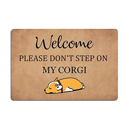 Eureya Fußmatte Welcome to Please Don \'t Step on My Corgi Welcome Fußmatte für Wohnzimmer, 40x 60cm