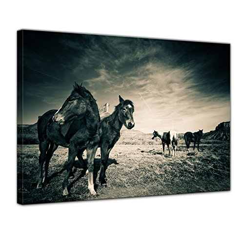 Kunstdruck - Pferde am Colorado Canyon - 80x60 cm 1 teilig - Bilder als Leinwanddruck - Wandbild von Bilderdepot24 - Tierwelten - Amerika - Natur - schwarzweiß - Pferdeherde am Canyon