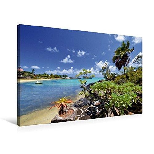 Preisvergleich Produktbild Premium Textil-Leinwand 75 cm x 50 cm quer, Mauritius | Wandbild, Bild auf Keilrahmen, Fertigbild auf echter Leinwand, Leinwanddruck: Am Cap Malheureux bei Grand Gaube (CALVENDO Orte)