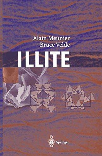 Illite: Origins, Evolution and Metamorphism (English Edition)