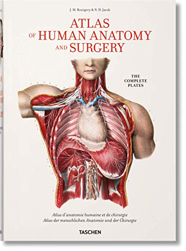 Bourgery. Atlas of Human Anatomy and Surgery (Fp)