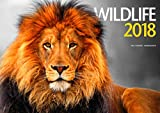 Wildlife 2018 Calendar