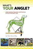 What's Your Angle