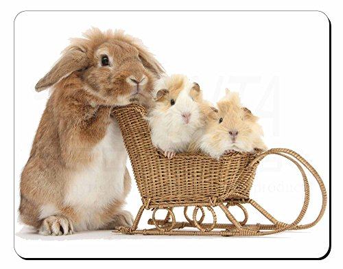 Coniglio e Guinea Pigs Tappetino mouse del computer pad regalo di natale
