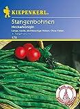 Bohnen - StangenBohnen - Neckarkönigin von Kiepenkerl