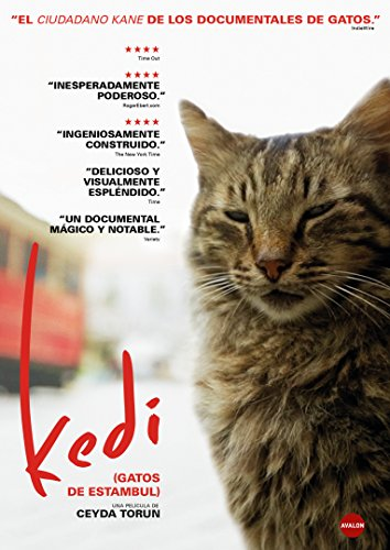 Kedi (Gatos de Estambul) [DVD]