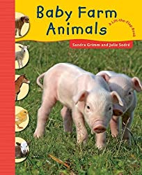 Baby Farm Animals (Lift the Flap Book) by Sandra Grimm (2012-09-06)