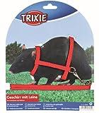 Trixie Geschirr aus Nylon mit Leine für Frettchen/Ratten, 12–25 cm x 8 mm