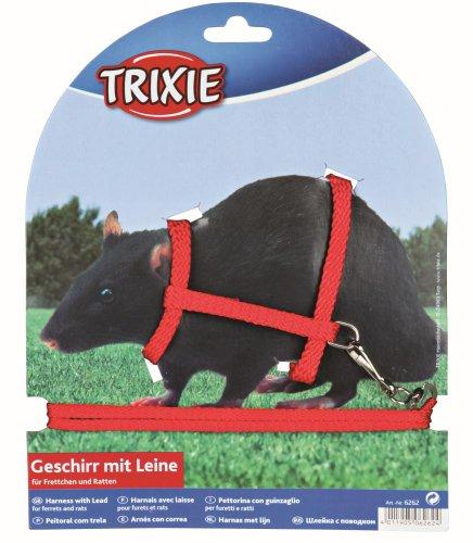 Trixie Harnais avec Laisse en nylon pour furets/rats,...