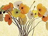 Artland Kunstdruck I Poster Shirley Novak Kürbismohn I Botanik Blumen Mohnblume Malerei Orange B2QV