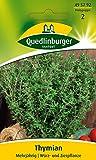 Thymian Mehrjährig QLB Basis Saatgut sonstige Kräuter (Liefermenge=4)