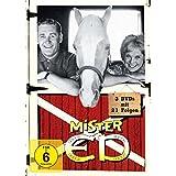 Mr. ED Collection 1 : Das sprechende Pferd