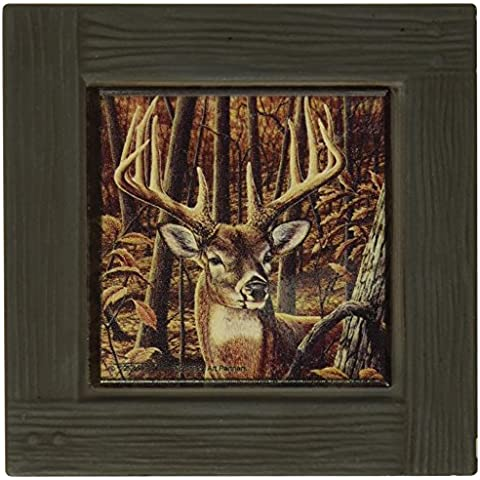 Thirstystone Coaster Absorbente AMPF2 Establecer Whitetail del D-lar Inn