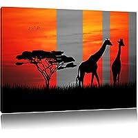 giraffe Africa tramonto nero / bianco Dimensioni: 120x80 su tela, XXL enormi immagini completamente Pagina con la barella, stampa d'arte sul murale con telaio, più economico di pittura o un dipinto a olio, non un manifesto o un banner, - Savannah Uccello Ragazze