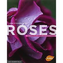 Roses, les meilleures variétés pour petits jardins