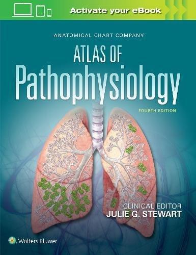 Genital Dermatology Atlas Pdf