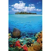 Bajo el agua tropicales Mar Profundo peces y isla Foto grande Póster 61por 91,5cm