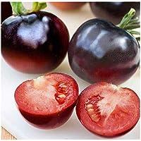Tomate Indigo Rose - - 20 semillas