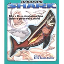 Uncover A Shark (Uncover It)