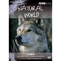 Natural World - Lobo: The Wolf that Changed America