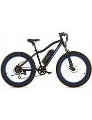 Greenway Elektrische Fat Bike, Panasonic Zelle Lithium Akku LCD, bafang Motor