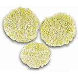 Karcher Pads de polissage pour sols en pierre / linoléum / PVC pour aspiro-cireuse  réf 2.863-198.0