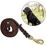 [Gesponsert]Hundeleine Leder, Focuspet 170X1.2cm Hundeleine aus Leder Geflochtene Leder Hundeleine Wasserdichte Hunde Lederleine Für Große Hunde Dunkelbraun