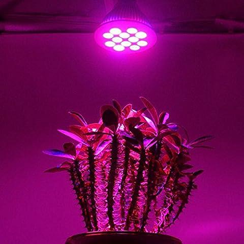 Luce Full Spectrum LED 12 W per coltivazione Indoor, attacco E27, per lampadine da coltivazione per piante in fioritura Vergetables giardino di frutta e idroponica, per serre e Grow Room, Patio