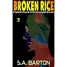 Broken Rice: Third Serial Installment