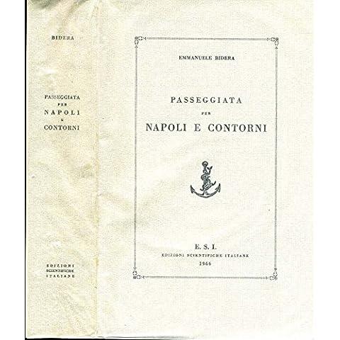 Passegiata Per Napoli E Contorni.
