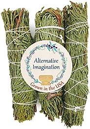 عصي خشب الأرز، عبوة من 3 قطع، حزم عصا تلطيخ 10.16 سم. نمت في الولايات المتحدة الأمريكية.